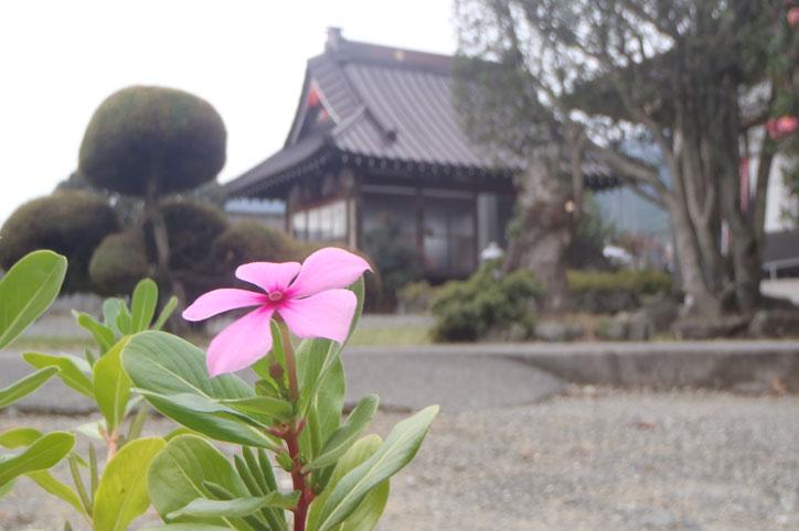 妙延山 法壽寺<br />(みょうえいさん ほうじゅじ)