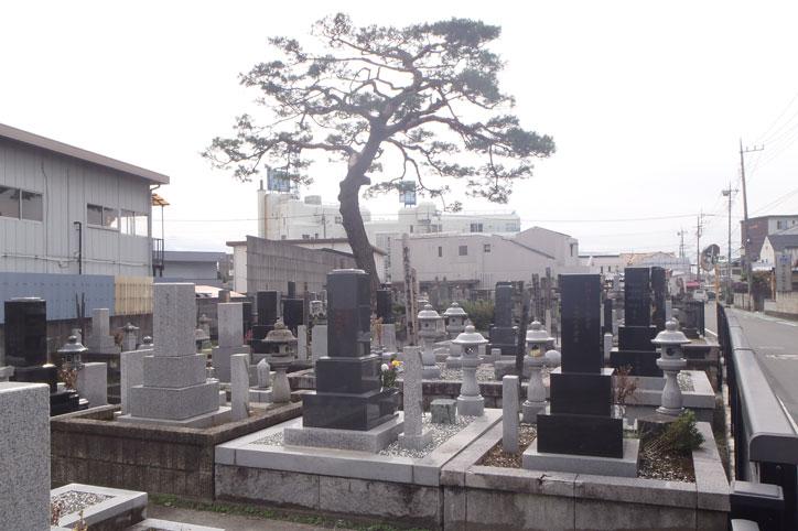 金輪山 善應寺(善応寺)<br />(こんりんざん ぜんおうじ)