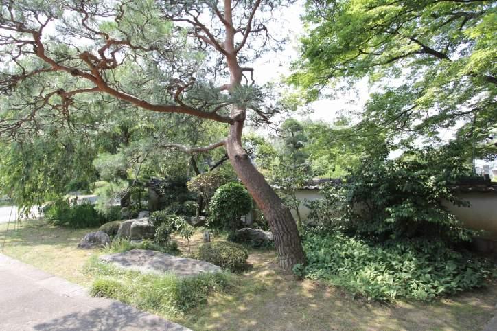 定林山 寶樹院<br />(ていりんさん ほうじゅいん)